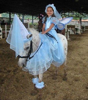 25 beste ideen over Paard kostuums op Pinterest