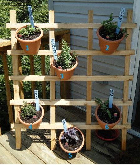 Backyard Herb Garden Ideas vintage galvanized wash tub herb garden A Girl Her Guy And Three Pooches Diy Pinterest Inspired Patio Herb Container