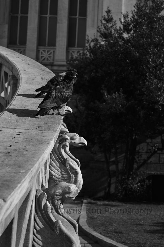 Athens by Costis Koufogeorgas