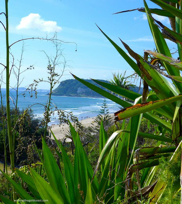 View from #Little Burleigh, #Burleigh Headland National Park in the distance