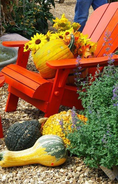 Orange Adirondack Chair In Fall