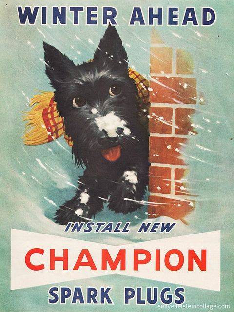 Quite possibly the cutest ad for spark plugs ever! :) #cute #ads #vintage #1950s #fifties #dog #spark_plugs