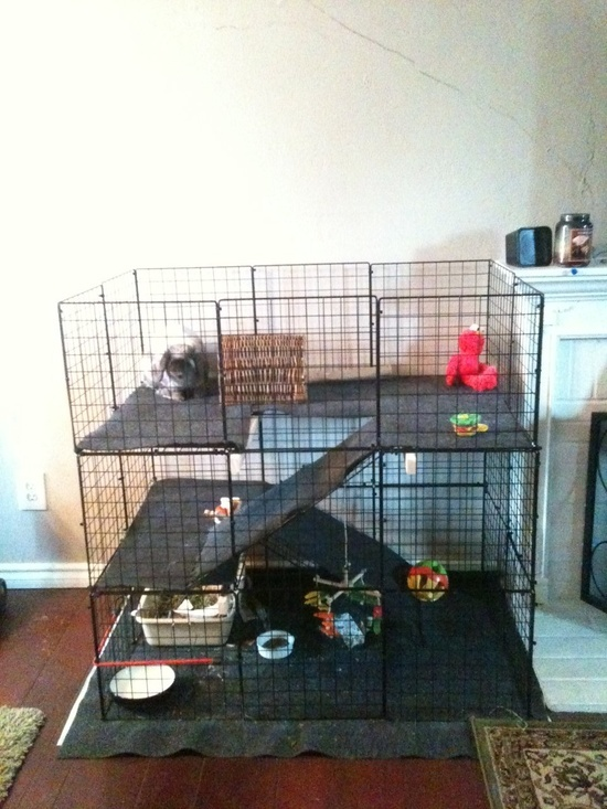284 best rabbit cages and toys images on pinterest for Build indoor rabbit cage