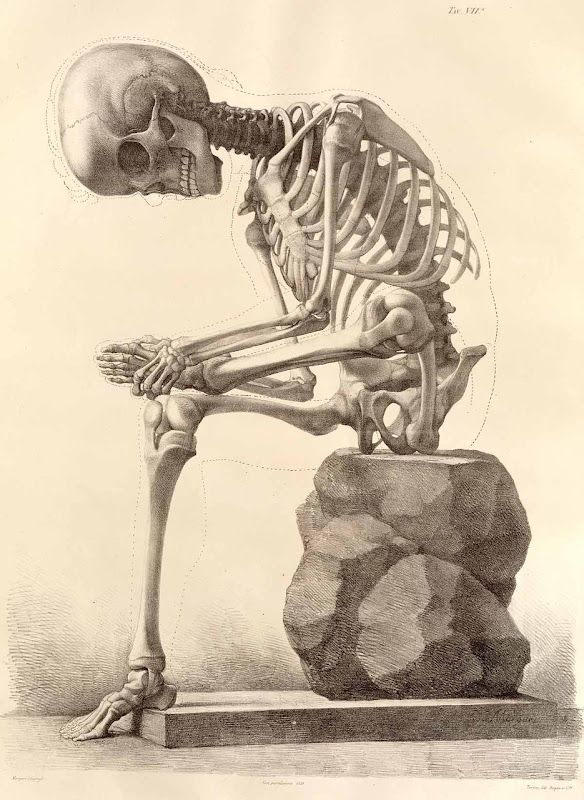 """Don't know why I love skeletons. This one has personality! (-:  Forget """"The Thinker."""" How about """"Sore Feet"""" instead."""