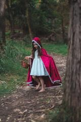 Red riding hood, girls costume, dress ups, diy costume
