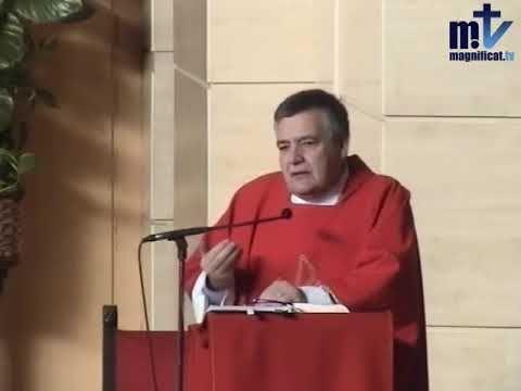 MI RINCON ESPIRITUAL: Evangelio y Homilía de hoy miércoles 22 de noviemb...