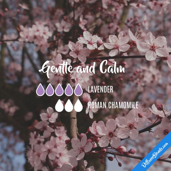 Gentle and Calm - Essential Oil Diffuser Blend