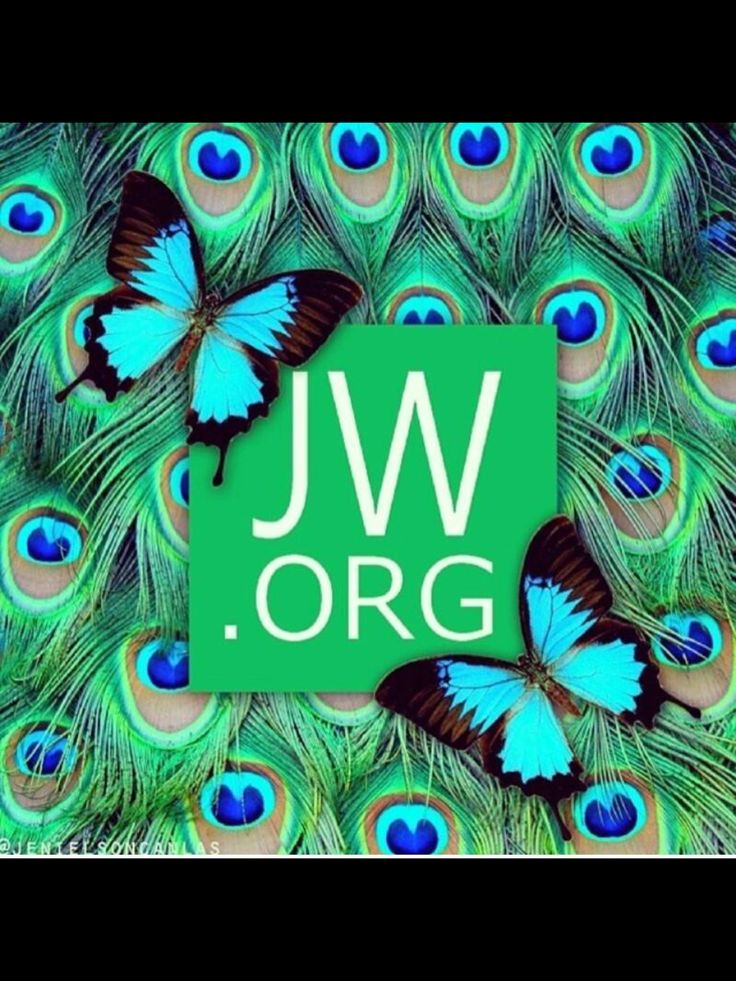 JW.org for all the answers to your questions!