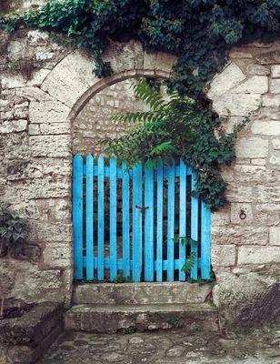Garden Gate - Steve Wilkie