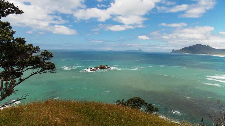 Taiharuru, Whangarei Heads, New Zealand  Pacific Ocean