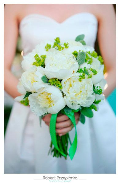 Sesja fotograficzna dla Orbit - Fresh Mint - Zdjęcia ślubne i buduarowe