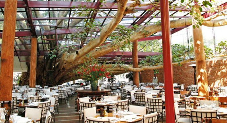 Restaurante Figueira Rubaiyat SP Vintage Pinterest