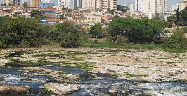 Chuva aumenta vazão de rios e vento de 142,5 km/h derruba árvores em Campinas e região | Agência Social de Notícias