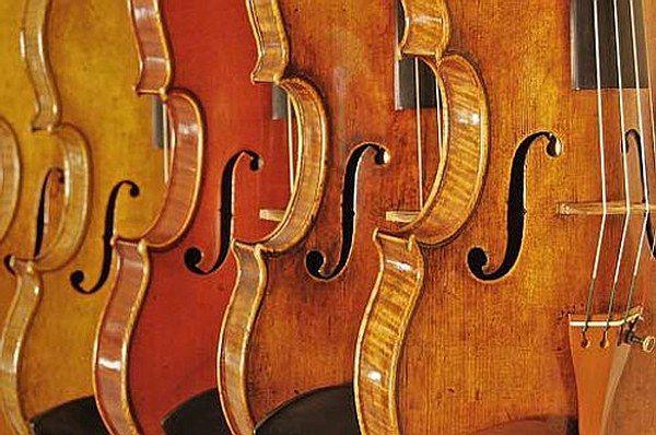 Lo sapevate che nel cuore di Roma c'è un vero e proprio tesoro? E' il Museo Nazionale degli Strumenti Musicali, un museo che raccoglie più di mille strumenti musicali, alcuni molti antichi e altri provenienti da molto lontano! Visitarlo è un'occasione unica per imparare a conoscere e riconoscere gli strumenti musicali, la loro evoluzione nel tempo e il ruolo che ricoprono in un'orchestra! Pronti per questo viaggio nel tempo, nello spazio….e nel suono?