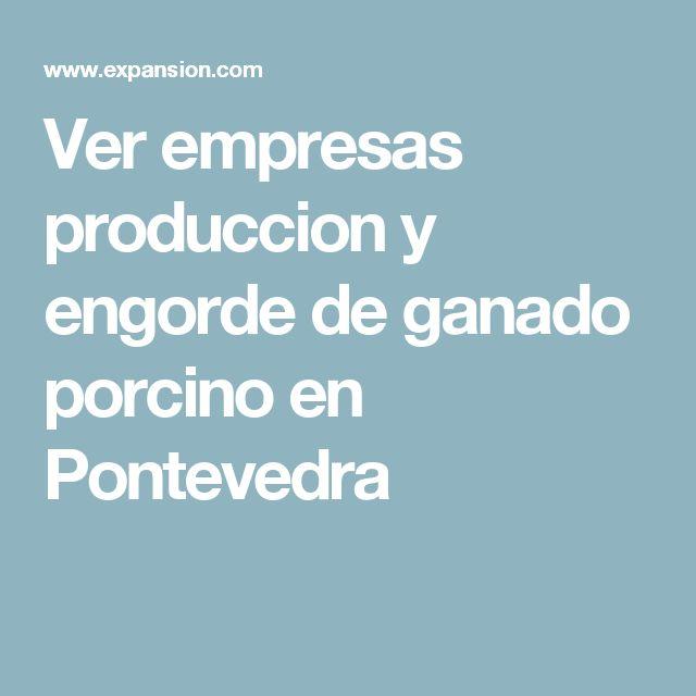 Ver empresas produccion y engorde de ganado porcino en Pontevedra