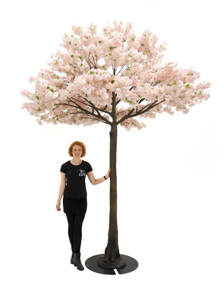 Pink Cherry Blossom Tree 3 9m Event Prop Hire Pink Cherry Blossom Tree Pretty Trees Tree Props