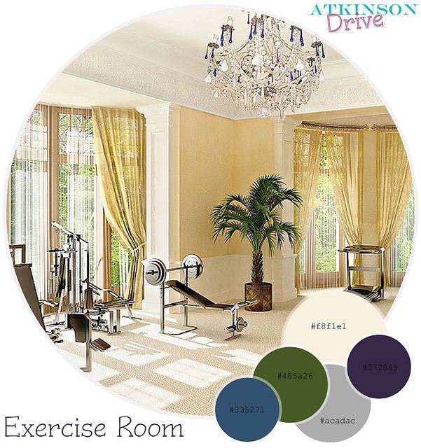 17 best images about color palettes to design a room for Workout room colors