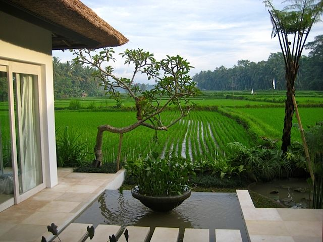 What a view! River Moon Villa, Ubud, Bali