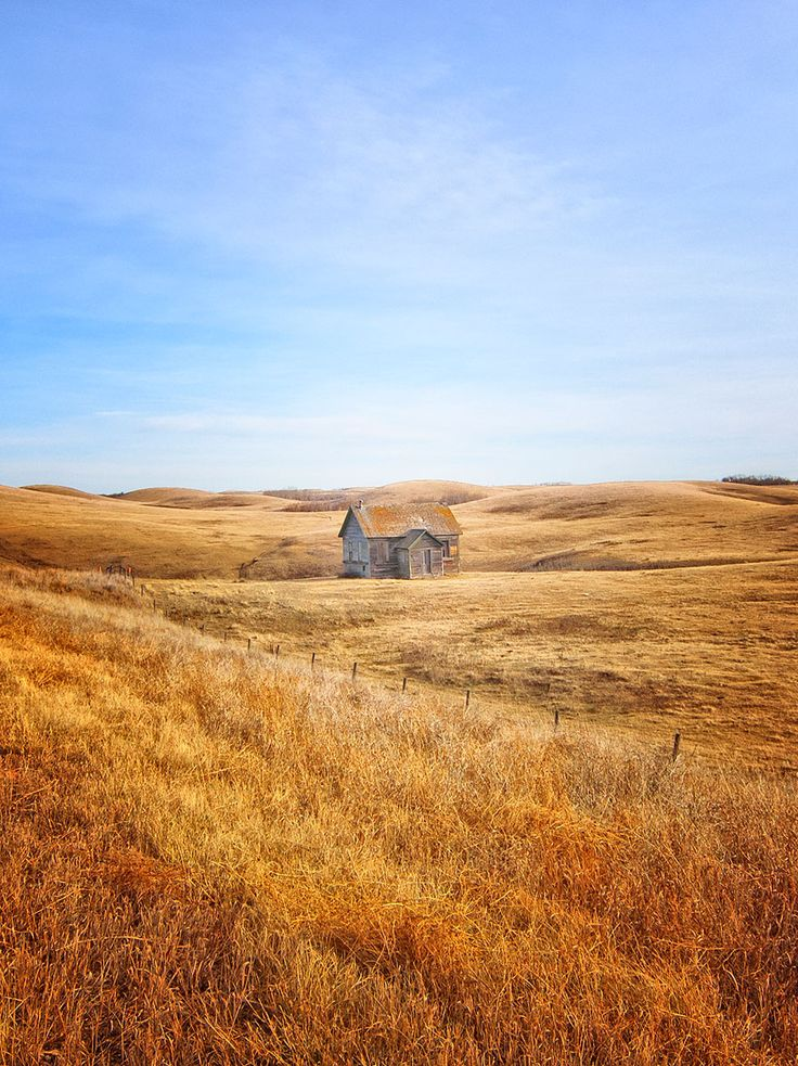 In The Fields Of Gold, Alberta, Canada http://www.boredpanda.com/isolated-lonely-houses/