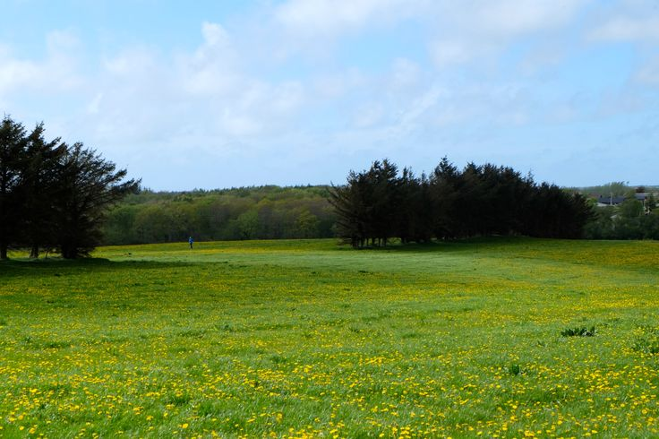 #denmark #spring #explore #wanderlust #travel #countryside #scandinavia