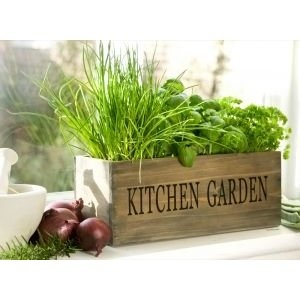 D.I.Y Projects Wooden Kitchen Herb Garden.