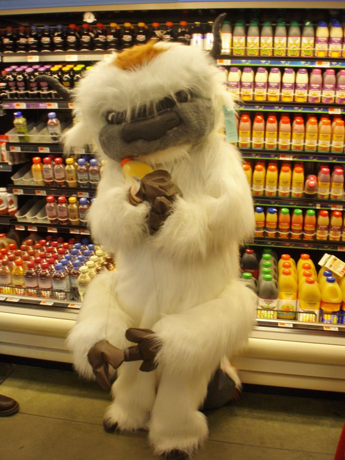 Appa in the orange juice section at the grocery store.  If I saw this, I'd probably just hug him like a crazy person.