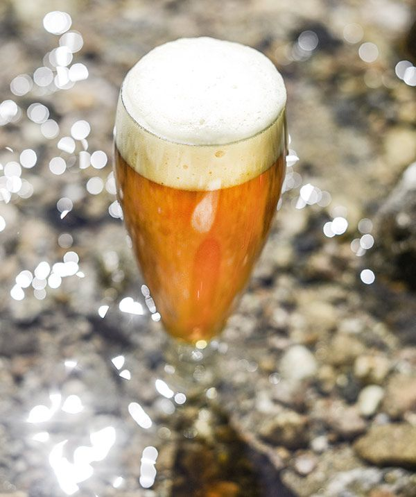 Try your hand at brewing a clone homebrew recipe of Bell's Two Hearted Ale! Extract and all-grain instructions included.