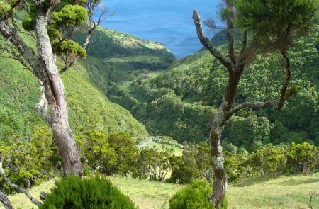 Alojamentos/moradias , para férias Trilhos , Ilhas dos Açores  Grande Rota de São Jorge