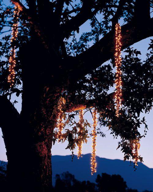 Host a Midsummer Night's Dream | Martha Stewart