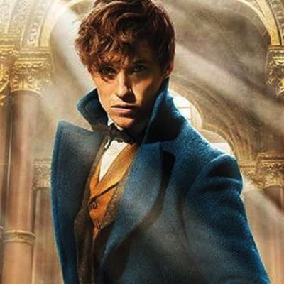 Fantastic Beasts issues open casting call for young Newt Scamander and Albus Dumbledore Ahh to be young again.... and a male :)