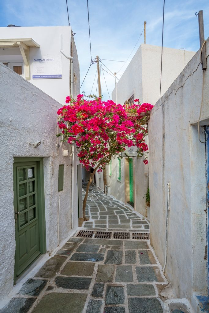 Apart from the wonderful #beaches, Ios #island has also some of the most #beautiful, #picturesque #alleys for those who like to #wander! Check it out: #greece #travelgreece #cruising #cyclades #ttot