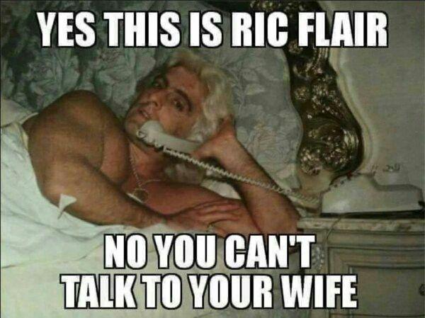 45ff51b31a62d5834eba59e70732cdbf 11 best ric flair woooooo! images on pinterest ric flair