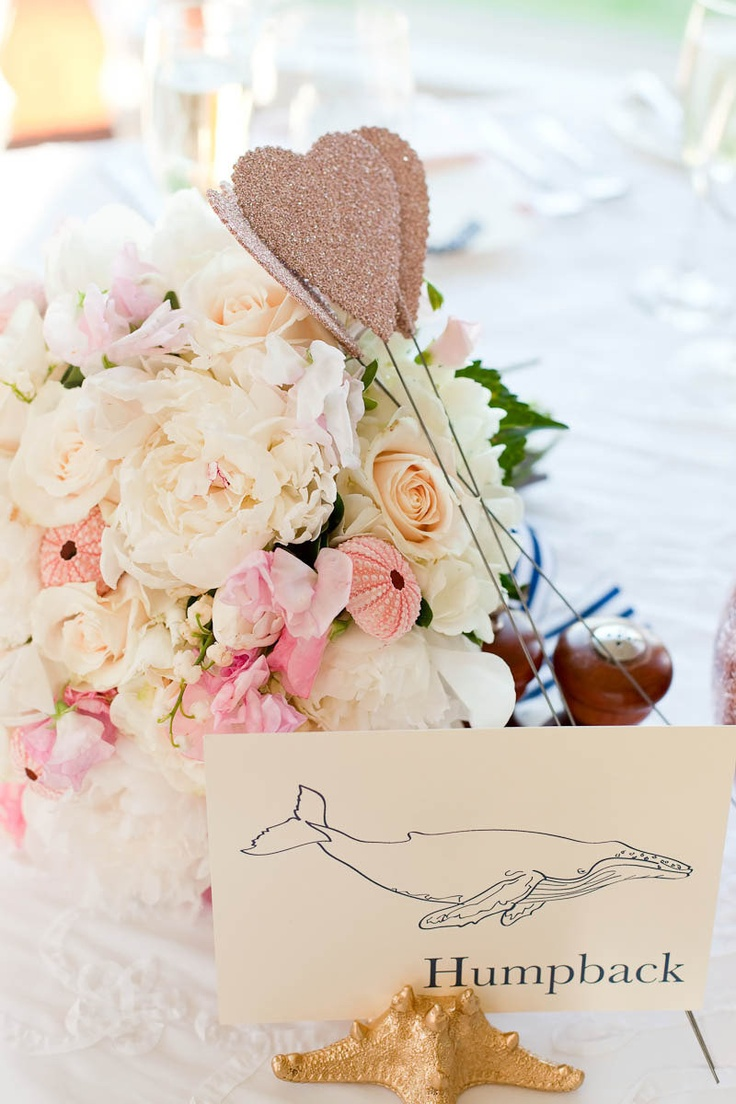 Photography By / http://emilysterne.com,Wedding Planning By / http://aldenblairevents.comWedding Plans, Sea Shells, Sweets Tables, Tables Cards, Sea Wedding, Capes Cod Wedding, Tables Numbers, Bouquets Ideas, Sea Photography