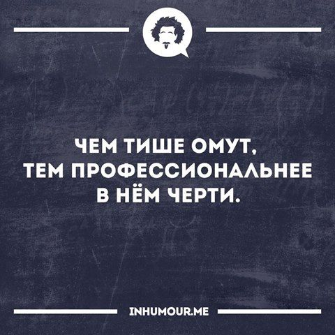 14359115_777510602352036_6577893438619447601_n.jpg (480×480)