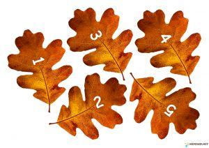 тематическое занятие осень