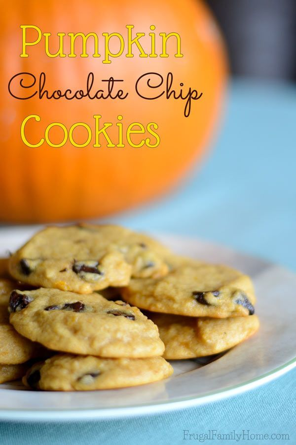 Looking for a pumpkin cookies that is chewy and not cake like? I've  got a great recipe for you to try. It's even dairy free,