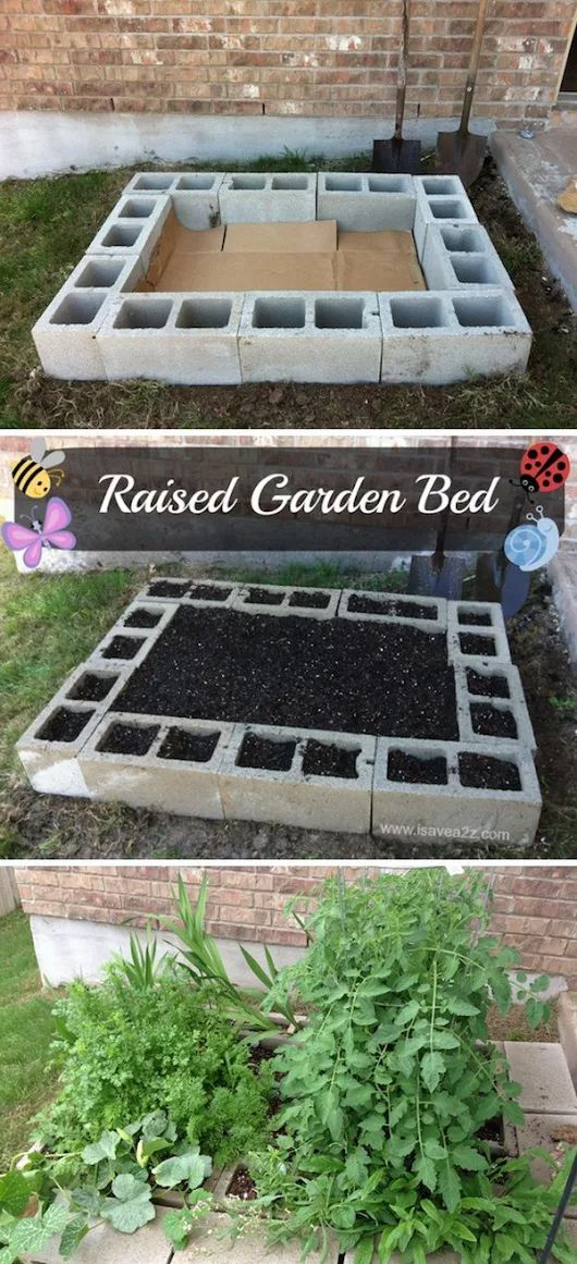 TOP 25 GARDENING IDEAS AND TIPS THAT EVERYONE SHOULD KNOW