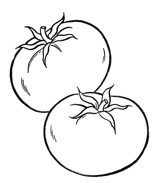 Healthy Tomato Vegetables Coloring Page Kids Coloring