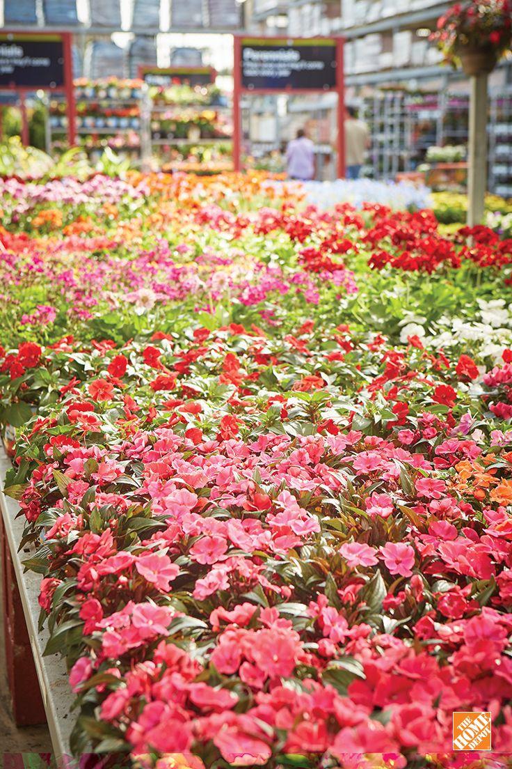 23 best Mother\u0027s Day images on Pinterest | Beautiful, Backyard ...