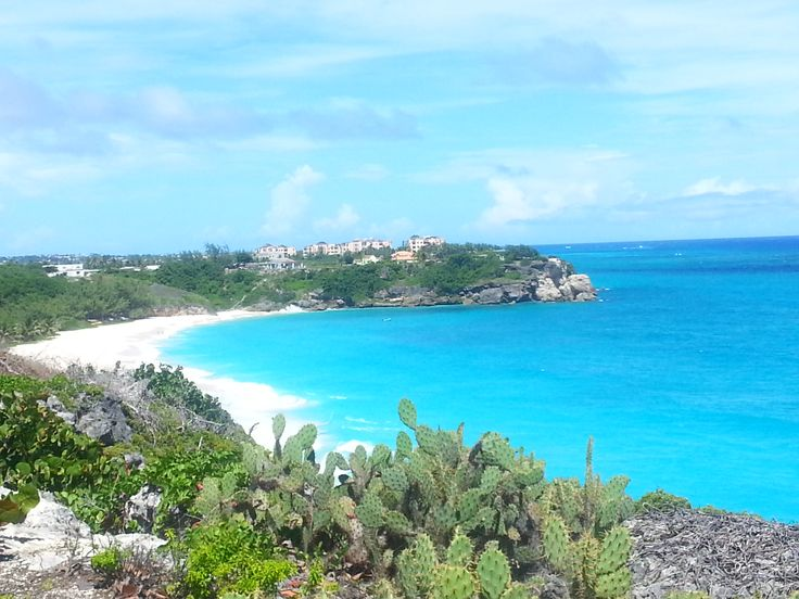 50 Best Beautiful Barbados Images On Pinterest: 17 Best Images About Beautiful Barbados Landscape On