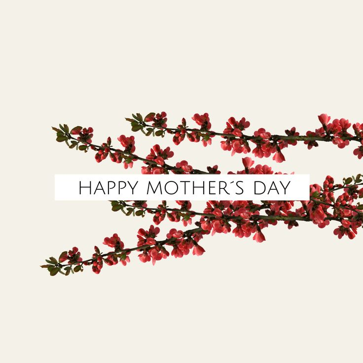 Design your Social Media Header for Happy Mother's Day with Desygner! #MothersDay #OnlineDesign #Desygner