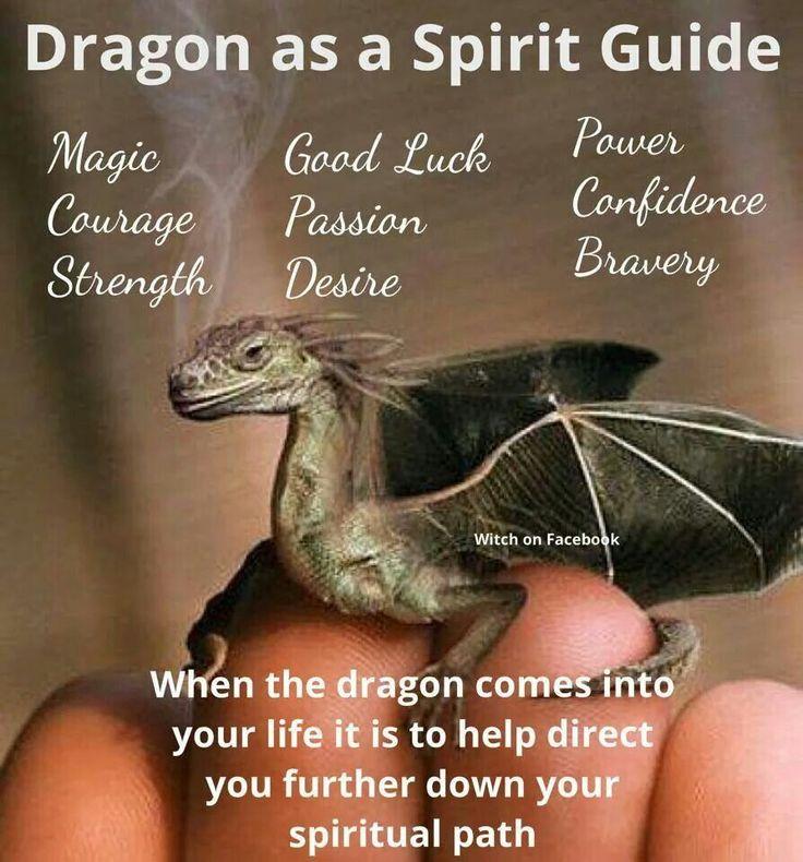Dragon as Spirit Guide