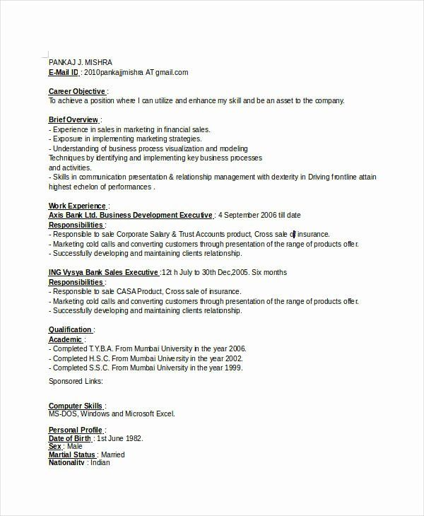 Business Development Executive Resume Unique Professional Executive Resume Template 35 Word Pdf
