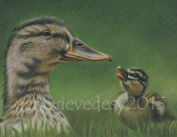 Original Drawing of a Mother and a Baby Duck 65 x 85 by MatanteGe