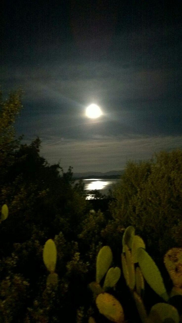 Lago Coghinas .La luna  si specchia!