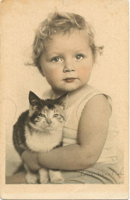 vintage photo-postcard signed by lotte herrlich - The little cat's expression is so sweet. Lotte Herrlich must have been a genius.