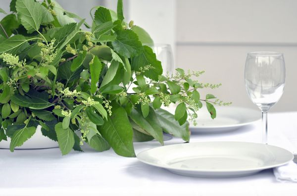 great idea - put a water soaked brick of floral foam in a container and stick clippings from nearby bushes, trees, plants, etc in it but a cheap, simple centerpiece or table decoration.