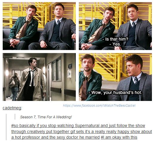 I am actually okay with that interpretation of the show. Like, Dean teaches Mythology and Folklore at a Uni and Cas is a Doctor (he uses his angel powers to diagnose and then just asks for the tests so his colleges don't get suspicious) but they do go hunting together too... I think I have created a fanfiction now... *Sweats* now I'm gonna have to write it.