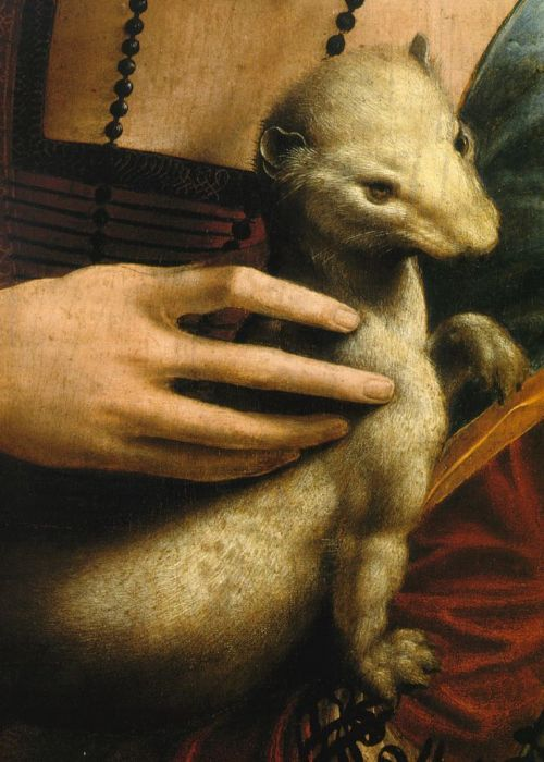 Lady with an Ermine (detail), Leonardo da Vinci, 1490