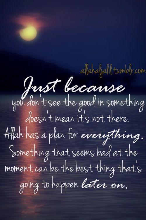 AllahAlJalil - Islamic Quotes & Reminders — allahaljalil.tumblr.com Trust Allah (swt) :)